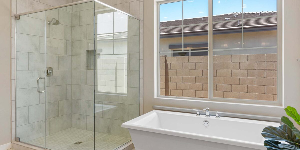 Preakness Estates Silver Charm Masterbath shower